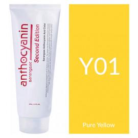 "Краска для волос ""Anthocyanin Second Edition Y01 Pure Yellow, 230 мл"""