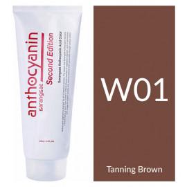 "Краска для волос ""Anthocyanin Second Edition W01 Tanning Brown, 230 мл"""